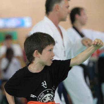 Beneficios del Taekwondo como actividad extraescolar