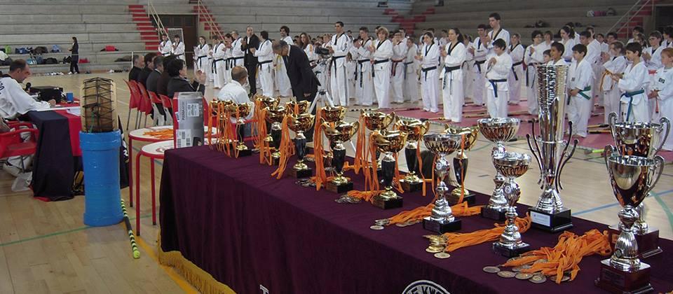 2n Campionat Internacional Lee Jae Kwon